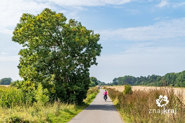 trasa-rowerowa-szlaku-eurovelo-10-kolo-m