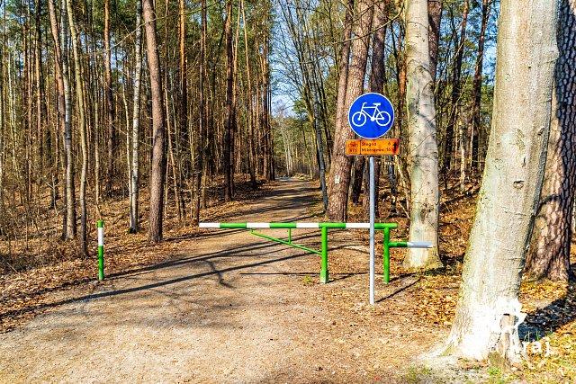 [Obrazek: wjazd-na-lesna-droge-rowerowa-w-sztutowi...-06304.jpg]
