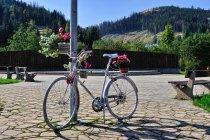 Biały rower z Nowej Bystrzycy