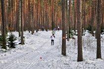 Bieg narciarski w Puszczy Piskiej