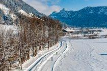 Biegacze narciarscy z wieży widokowej