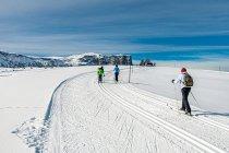 Biegowa trasa narciarska na Alpe di Siusi