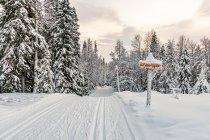 Biegowa trasa narciarska niedaleko Ruki