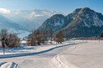 Biegówki między alpejskimi szczytami