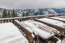 Biegówkowe klimaty w Ramsau w Austrii