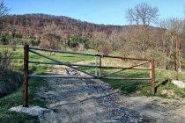 Brama w dolinie Bielicznej
