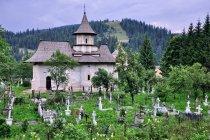 Cmentarz i kaplica cmentarna w Suczewicy