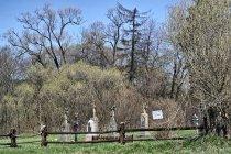 Cmentarz nieistniejącej wsi Długie