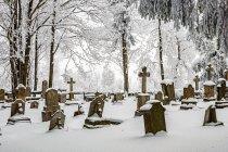 Cmentarz w Kamieńczyku