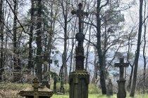 Cmentarz w Regetowie Wyżnym
