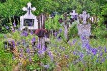 Cmentarz w Sat Sugatag