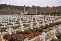 Cmentarz wojenny 1 Armii Wojska Polskiego w Starych Łysogórkach