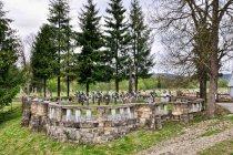 Cmentarz wojenny nr 56 w Smerekowcu