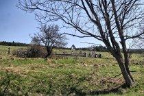 Cmentarz wojskowy nr 44 w Długiem