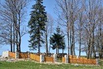 Cmentarz wojskowy nr 62 w Banicy