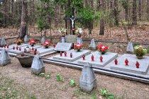 Cmentarz wojskowy przed Tleniem