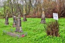 Dawny cmentarz łemkowski we wsi Długie