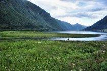 Delta rzeki spotykająca się z Fjaerlandfjordem