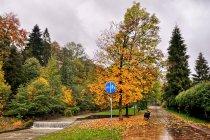 Deszczowa promenada z drogą dla rowerów w Szczyrku
