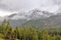 Deszczowe Dolomity - Cima d'Asta