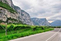 Dolina Adygi pełna winnic