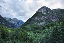 Dolina Naeroyfjordu