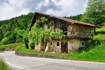 Dom w Valle di Primiero