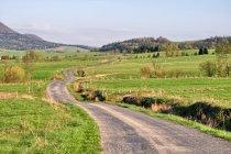 Droga do Izb w Beskidzie Niskim