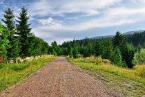 Droga do Pleszy