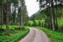 Droga na Passo Cinque Croci