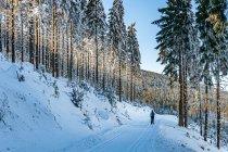 Droga nad Lejami pod Czarnym Grzbietem