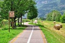 Droga rowerowa Adygi