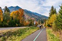 Droga rowerowa do Białej Spiskiej