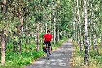Droga rowerowa do Spały