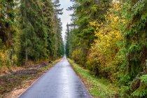Droga rowerowa po dawnym szlaku kolejowym