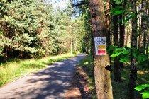 Droga rowerowa przed Mirowem