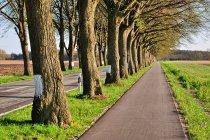 Droga rowerowa przed Wittstock
