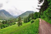 Droga rowerowa w kierunku Val di Fiemme