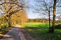 Droga rowerowa w Prignitz