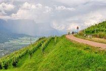 Droga rowerowa w stronę Cavalese