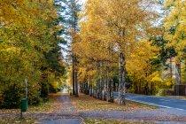 Droga rowerowa w Tatrzańskiej Kotlinie