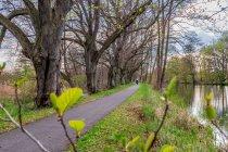 Droga rowerowa wzdłuż kanału Finow