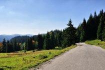 Droga w Beskidach Kisuckich