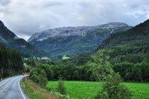 Droga w kierunku Naeroyfjordu