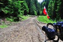Droga w kierunku Suczewicy