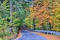 Droga w stronę Kubalonki
