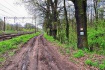 Droga z Nędzy do rezerwatu Łężczok