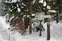 Drogowskazy szlaków w Beskidzie Niskim
