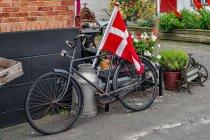 Duński rower z Arsdale
