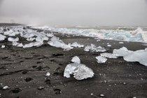 Dwa rzędy lodowych brył na plaży koło Jökulsárlón